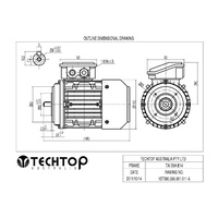 TechTop 0.06 kW Motor 415V Three Phase 4 Pole, 1370 RPM, Foot & Flange - AIMS Industrial Supplies