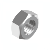 "1/4"" BSW 304 Stainless Steel Standard Hex Nut - Box of 100"