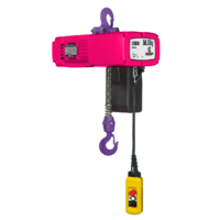 Challenger 250kg  Electric Chain Hoist x 3m